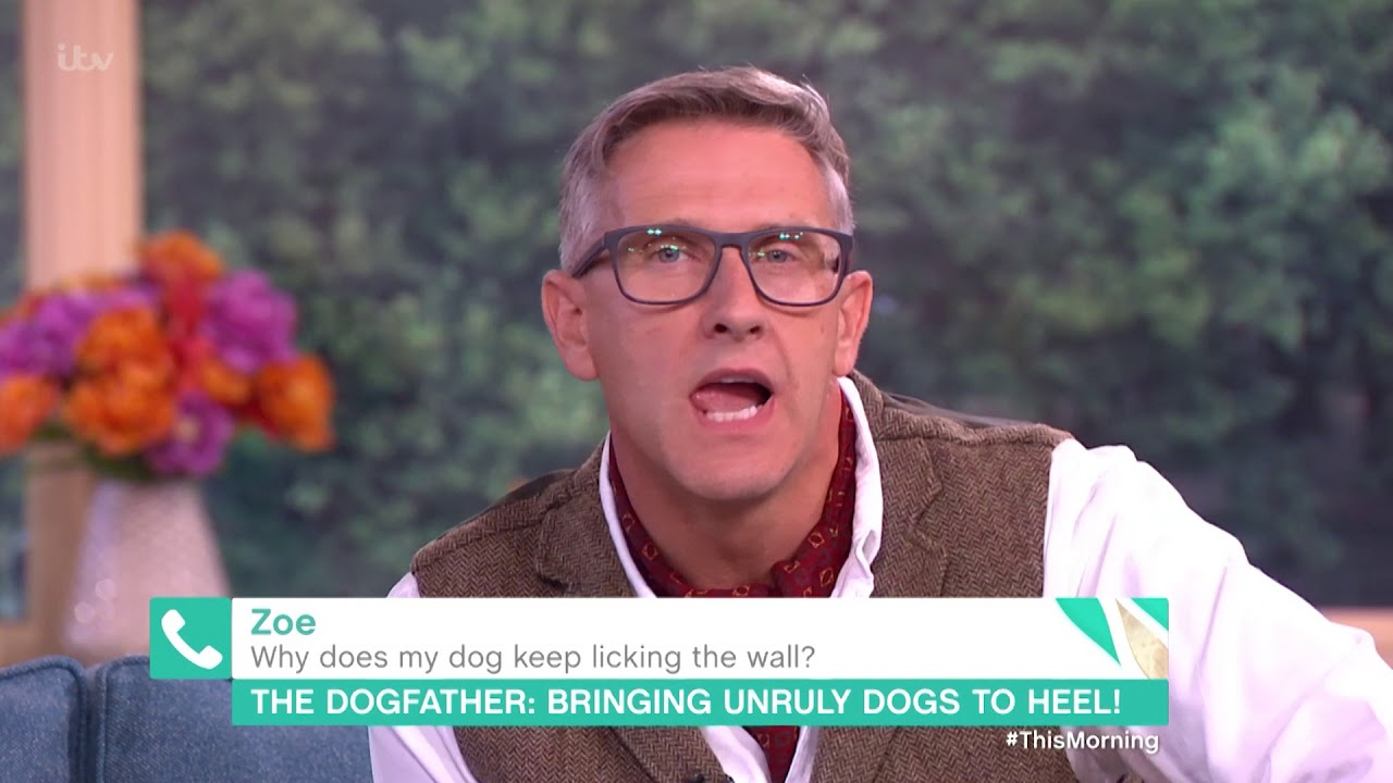 Why Does My Dog Keep on Licking the Wall? | This Morning