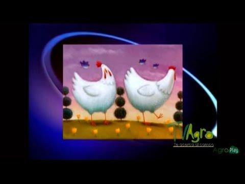 historia-de-la-medicina-veterinaria---tvagro-por-juan-gonzalo-angel