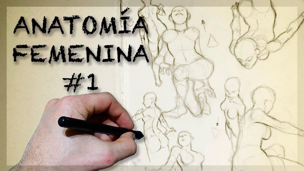 Cómo dibujar ANATOMÍA FEMENINA #1 - Sketchbook | TUTORIAL - YouTube