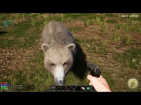 Stealth Bear Attack | Hold your Own Survival