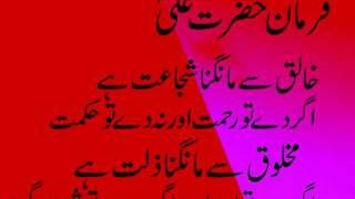 Hazrat Ali Quotes 8