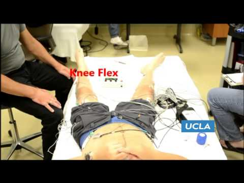 Paralyzed subject Training in Ekso during spinal cord stimulation