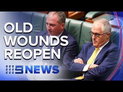 Barnaby Joyce and Malcolm Turnbull lash out at former colleagues | Nine News Australia