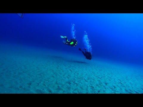 Aquarium Scuba Dive Site
