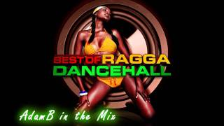 DANCEHALL, DUB & REGGAE MEGAMIX - BOOMBACLOT BRUDREN! 2011/2012