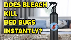 Does Bleach Kill Bed Bugs Instantly?