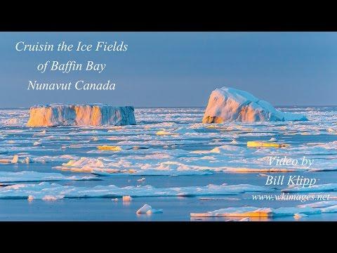 Baffin Bay, Cruisin the Ice Fields