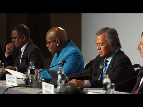 Henry Puna, Prime Minister of Cook Islands at IRENA's 8th Assembly