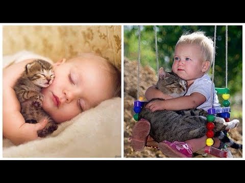 Funny Babies Playing with Cats. TRY NOT TO LAUGH! Vines Compilation 2019. Cute video of kids & cats