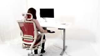 Electric Height Adjustable Desk Sit Stand Desk Standing Desk- Ergomaker