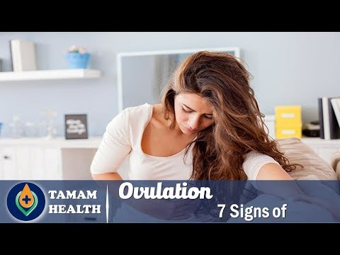 7 Signs of Ovulation | when do women ovulate