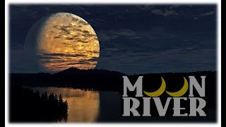 Moon River  ムーンリバー Tribute To Andy Williams