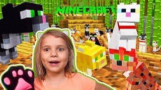 Кошачий Minecraft - приручаем и дрессируем кошек / побеждаем слаймов