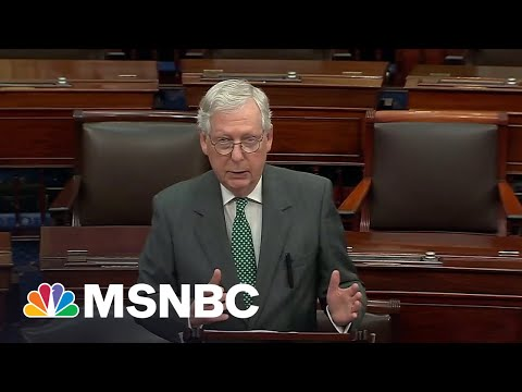 'It's A Dog Whistle': McConnell Slammed For Fake Socialism Attacks
