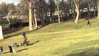 Un Aigle royal attrape un enfant dans un parc