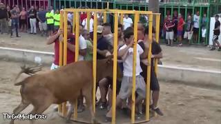 Funny videos 2017 : Stupid people doing stupid things - Bull Fighting - Bull Fails accident