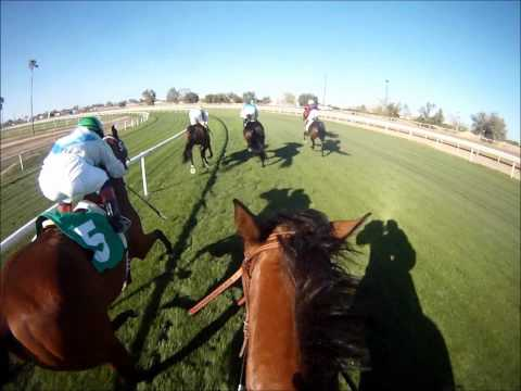 """Jockey Cam: Turf Paradise Let's You """"Ride the Race"""" in HD"""