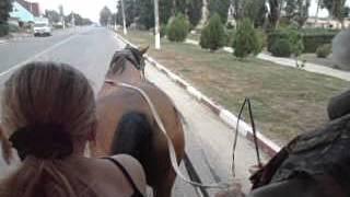 Экскурсия по Лазурному на лошади(, 2016-01-11T22:20:06.000Z)