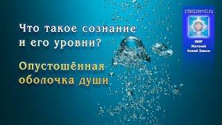 4. Что такое сознание и его уровни? Где находится душа в теле человека?