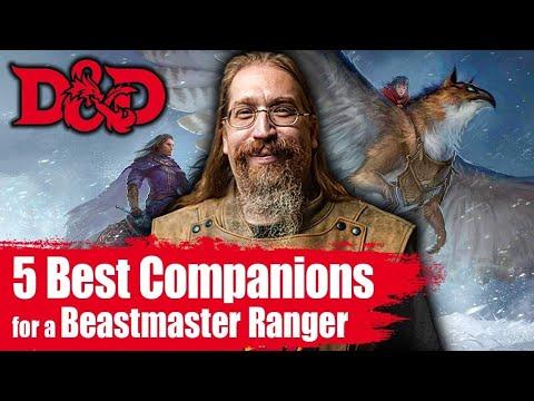 5 Best Beast Companions For The Beast Master Ranger Youtube