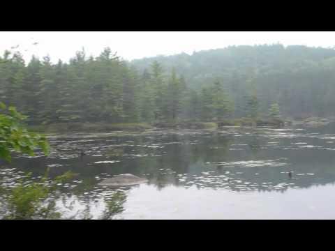 Samuel de Champlain Provincial Park