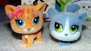 """✿Распаковка игрушки с мармеладом """" Пушистики """" (toys) котята - Sweet Box"""