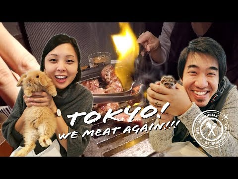 TOKYO: HEDGEHOG CAFE, movie bar and mouthwatering KOBE BEEF (EP 2)