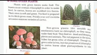 Class 4 Science Producers Of Food The Green Plants Part 2