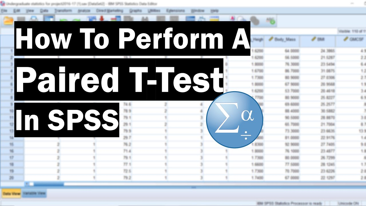 How To Perform A Paired Samples T-Test In SPSS - Top Tip Bio