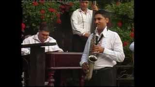 NELU DE LA GALICEA - Instrumentala - 2