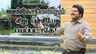 Yaackobennum Siru Poochiye - Pastor Lucas Sekar | Lyrics Video | Tamil Christian Song