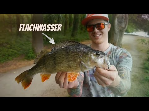 Angeln auf Barsche im Flachwasser from YouTube · Duration:  12 minutes 24 seconds