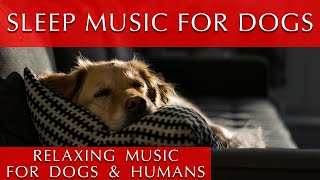 Relaxing Music for Dogs and Humans to Sleep To | 432Hz Meditation Music