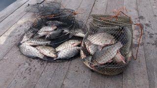 Рыбалка на карася. С.Маяки Р.Днестр 2016г. HD