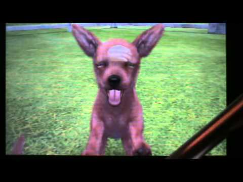 CATS TÉLÉCHARGER FRANAIS NINTENDOGS BOULEDOGUE