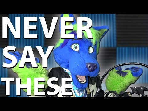 30 Things You Should NEVER Say To Furries