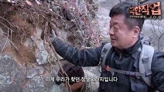 극한직업 - Extreme JOB_미세먼지를 잡아라!- 도라지부터 미역까지!_#001