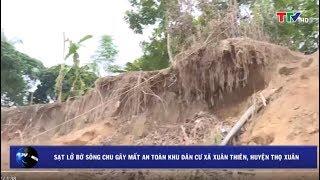 (TTV) Sạt lở bờ sông Chu gây mất an toàn khu dân cư  xã Xuân Thiên, huyện Thọ Xuân