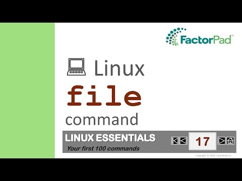Linux file command summary with examples