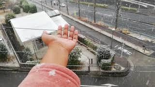 SNOWFALL |  2019 | TELUGU VLOGS FROM JAPAN