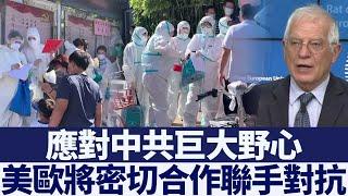 歐盟高級代表:歐美要就香港局勢緊密合作|新唐人亞太電視|20200617