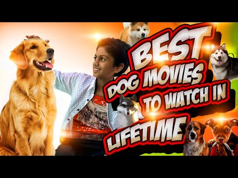 Best dog movies to watch in Lifetime | Ritzones