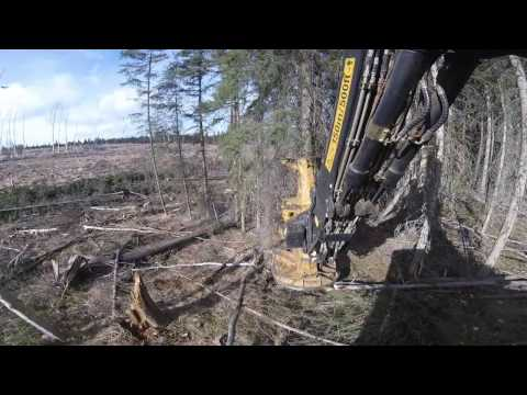 Tigercat L870C Feller Buncher Edit