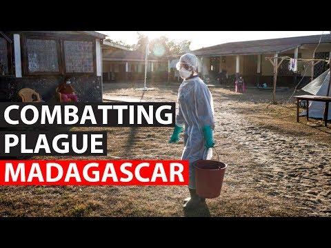 MADAGASCAR | MSF tackles plague outbreak