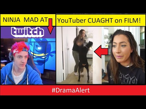 YouTuber EXPOSED for Spitting on DOG! #DramaAlert Ninja being used by TWITCH!!