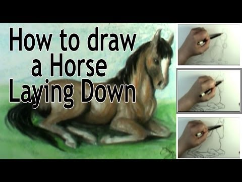 How To Draw A Horse Laying Down