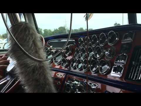 Данкотранспорт видео короткие ролики