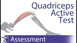 Quadriceps Active Test / Active Drawer Test | Posterior Cruciate Ligament Tear