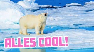 Klimawandelleugner sind SO dumm