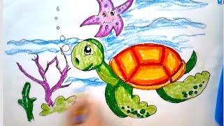 Bé tập vẽ con vật | Dạy bé tập vẽ con rùa biển | Dạy bé học